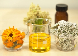 Clean Your Apartment with Essential Oils