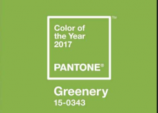 "Pantone Color of the Year 2017 ""Greenery"""